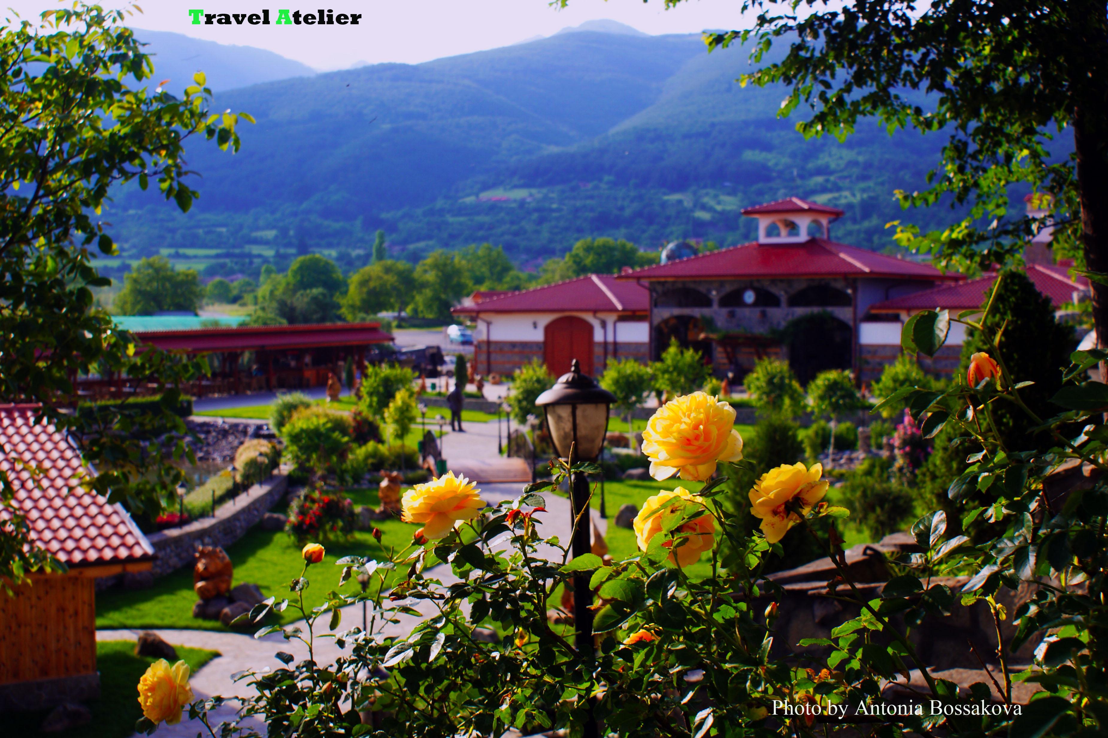 Дамасцена,България