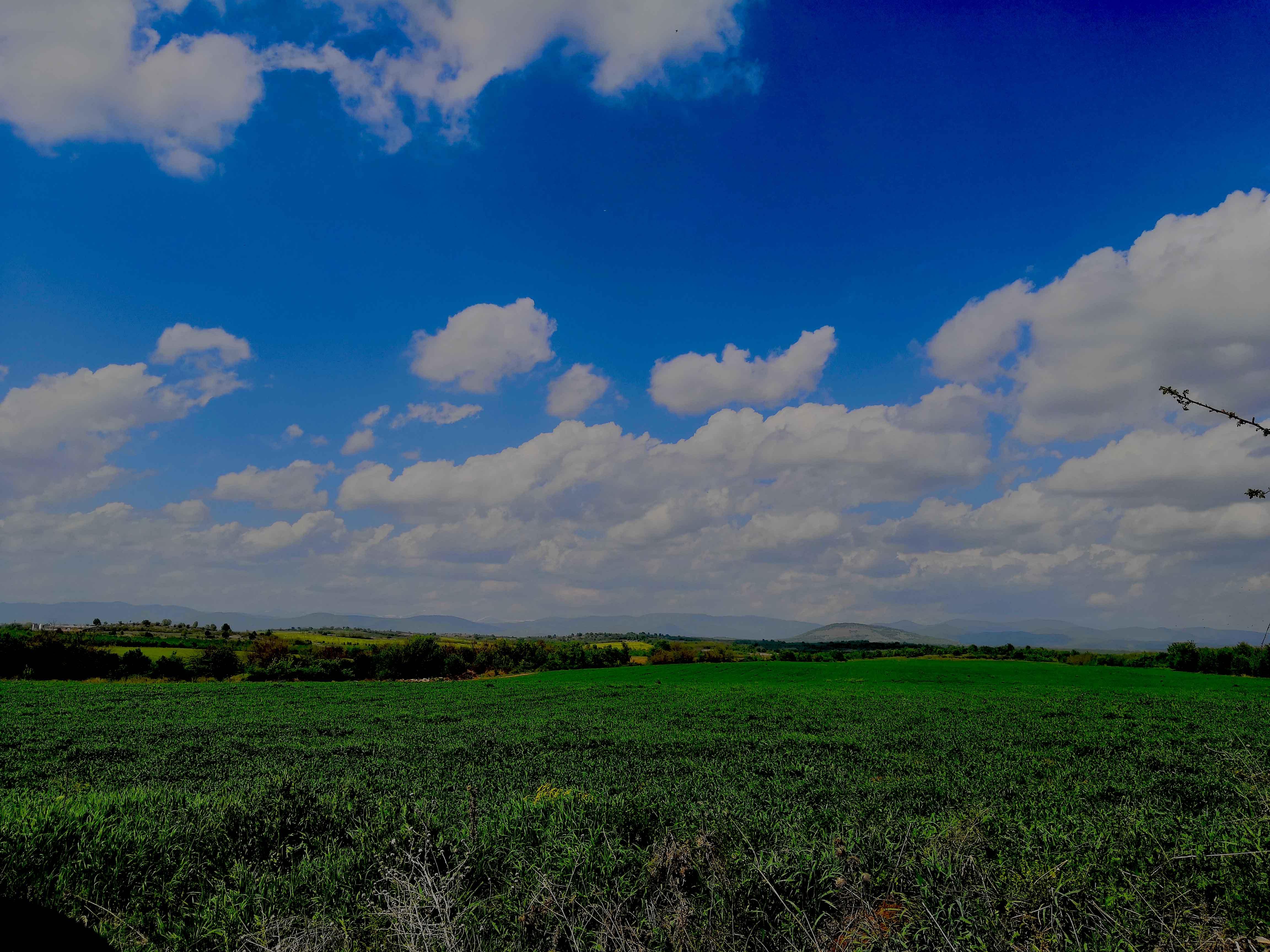 Горно-тракийска низина